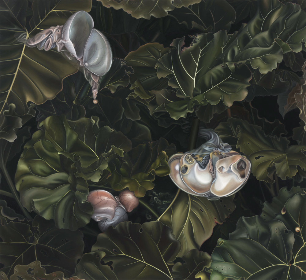 Untitled, 2012. Oil on board, 44 x 48 cm
