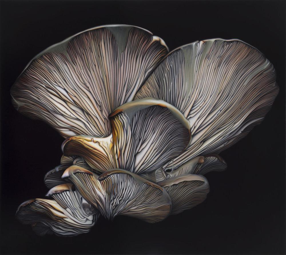 Untitled, 2015. Oil on board, 40 x 45 cm