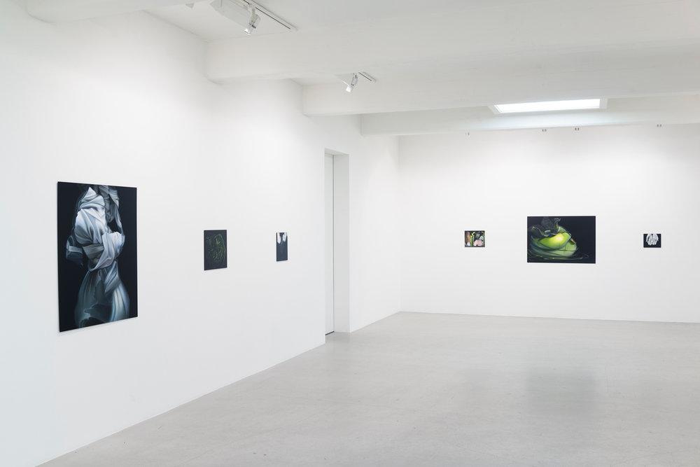 Christian Larsen gallery, 2016, Stockholm