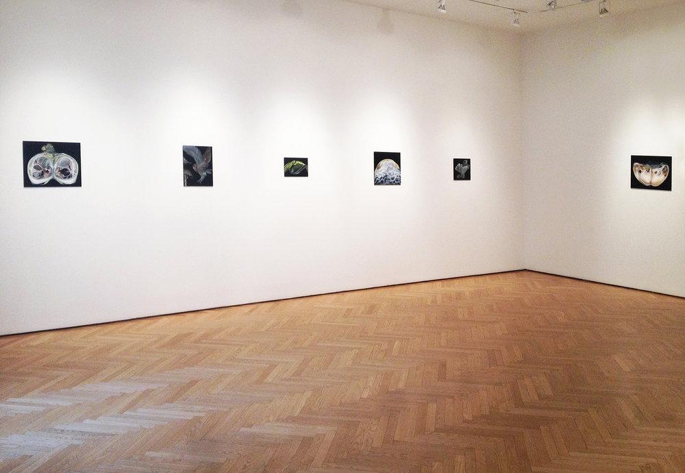Stellan Holm gallery, 2014, New York