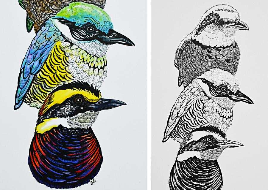 W Bird 10.jpg