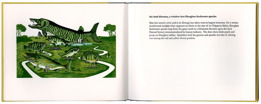 book_land.jpg