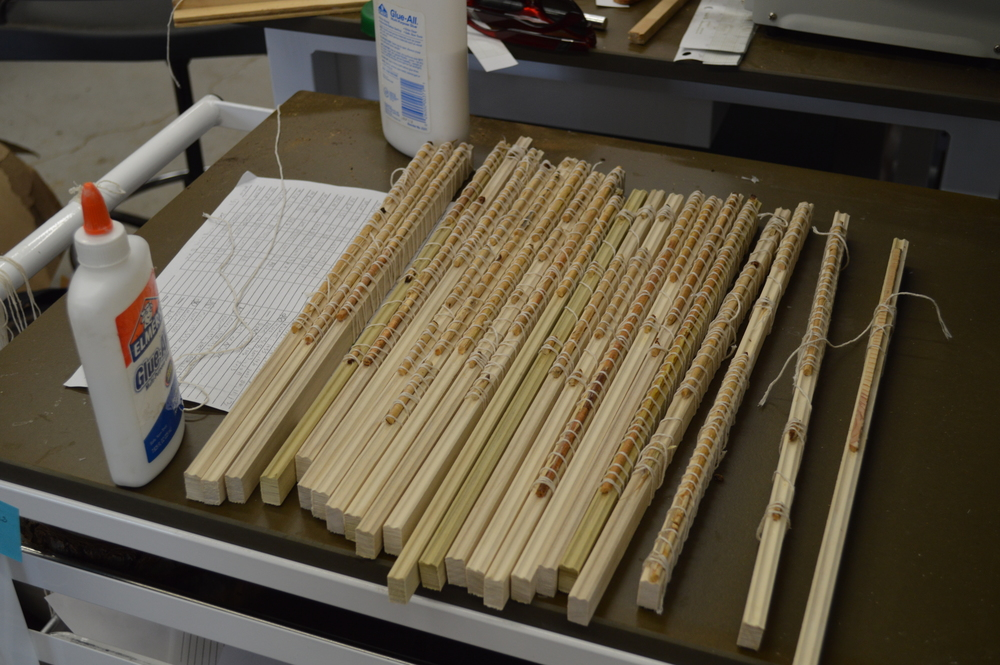 Core samples being prepared in lab at LTRR (not necessarily bristlecone)