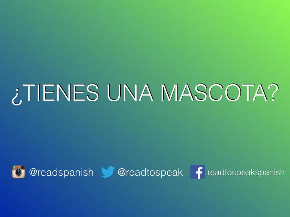 Read Spanish Questions — ¿Tienes una mascota?