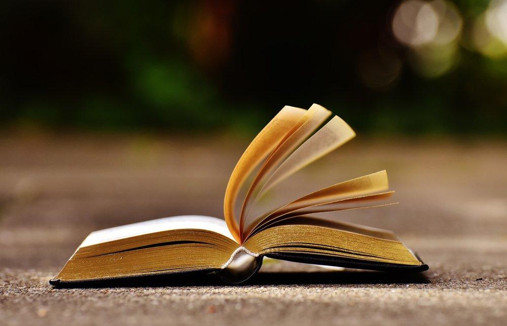 La sabiduría de nuestros antepasados está escrita en los libros. ¿Crees que es importante que leamos?