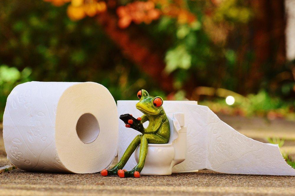 No hay chicas en Costco, pero sí hay mucho papel higiénico.