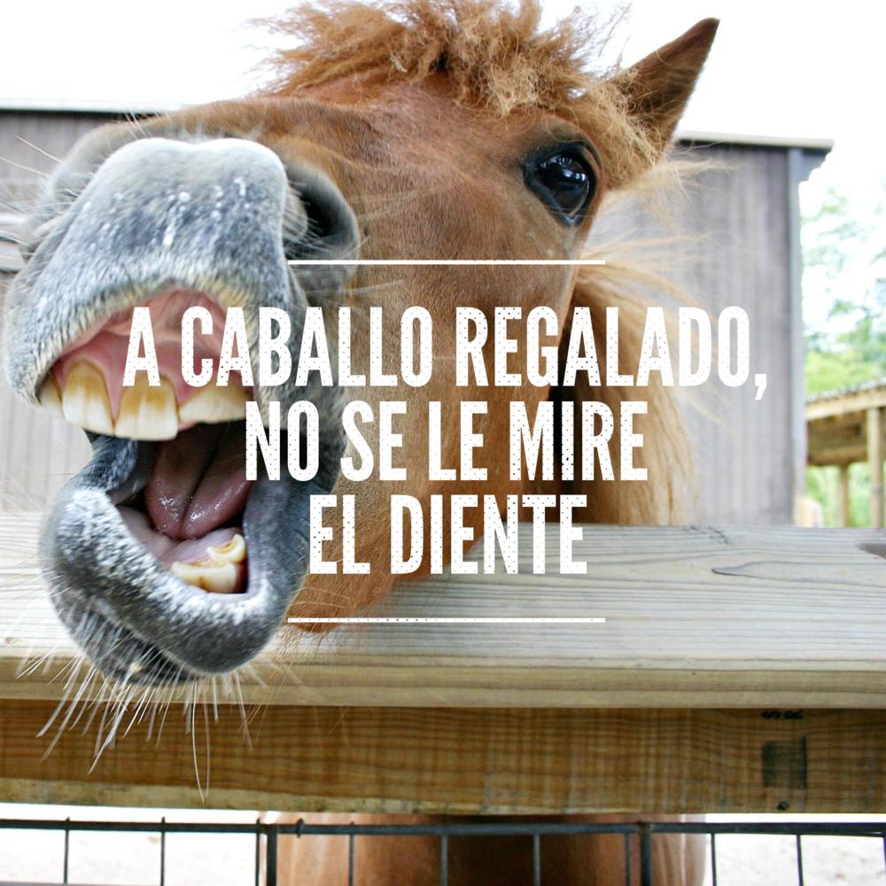 A caballo regalado no se le mire el diente