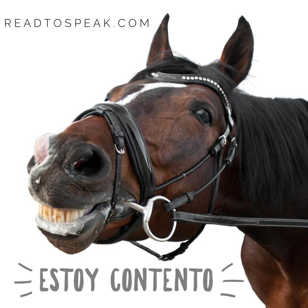 Soy un caballo. Estoy contento. Estoy muy feliz.