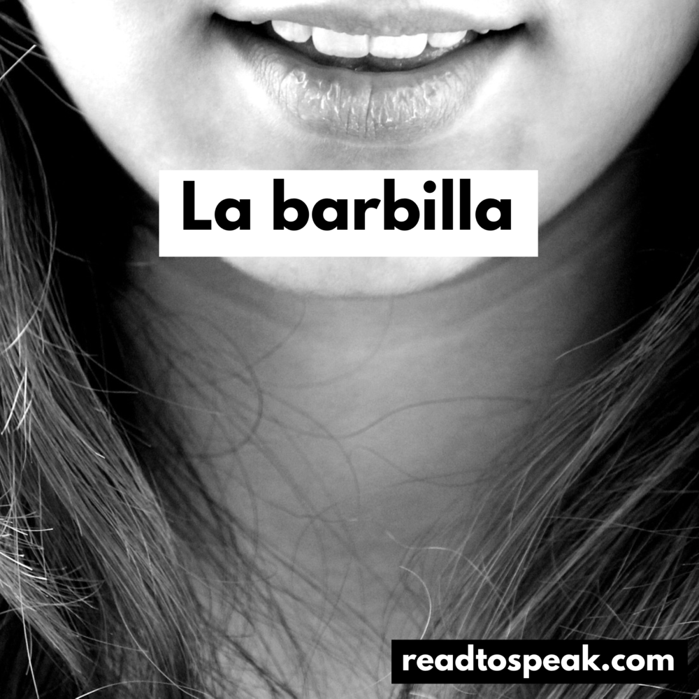 Read to Speak Spanish - la barbilla.PNG