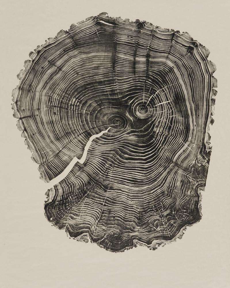 """Willow,"" 49 5/8"" x 38 5/8"", relief print, 2011, by Bryan Nash Gill"