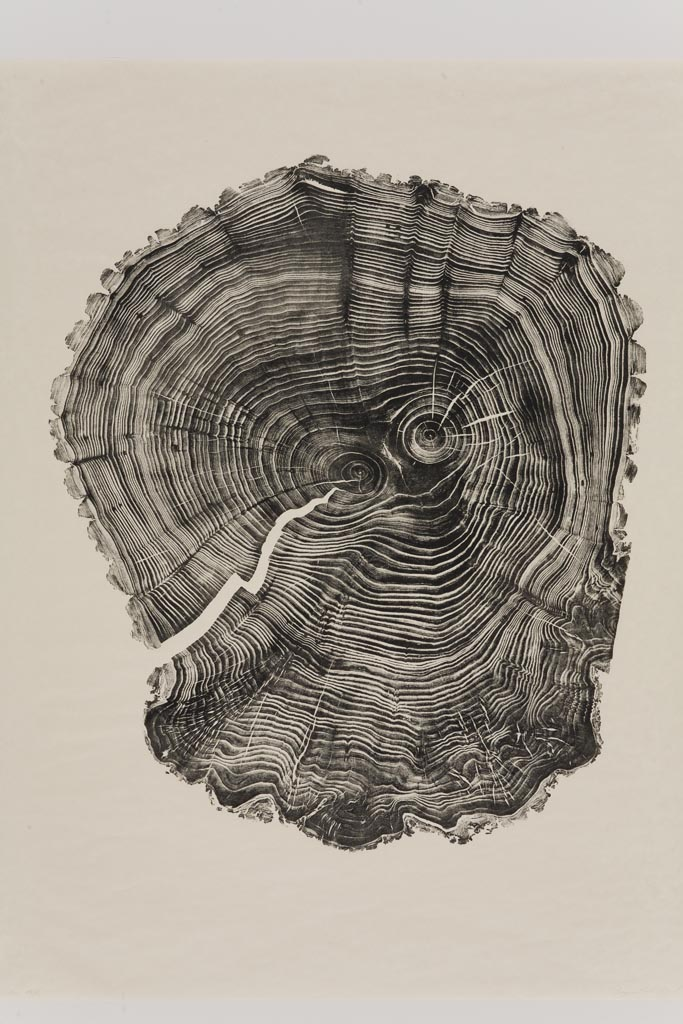 Bryan-Nash-Gill-Woodcut-Willow.jpg