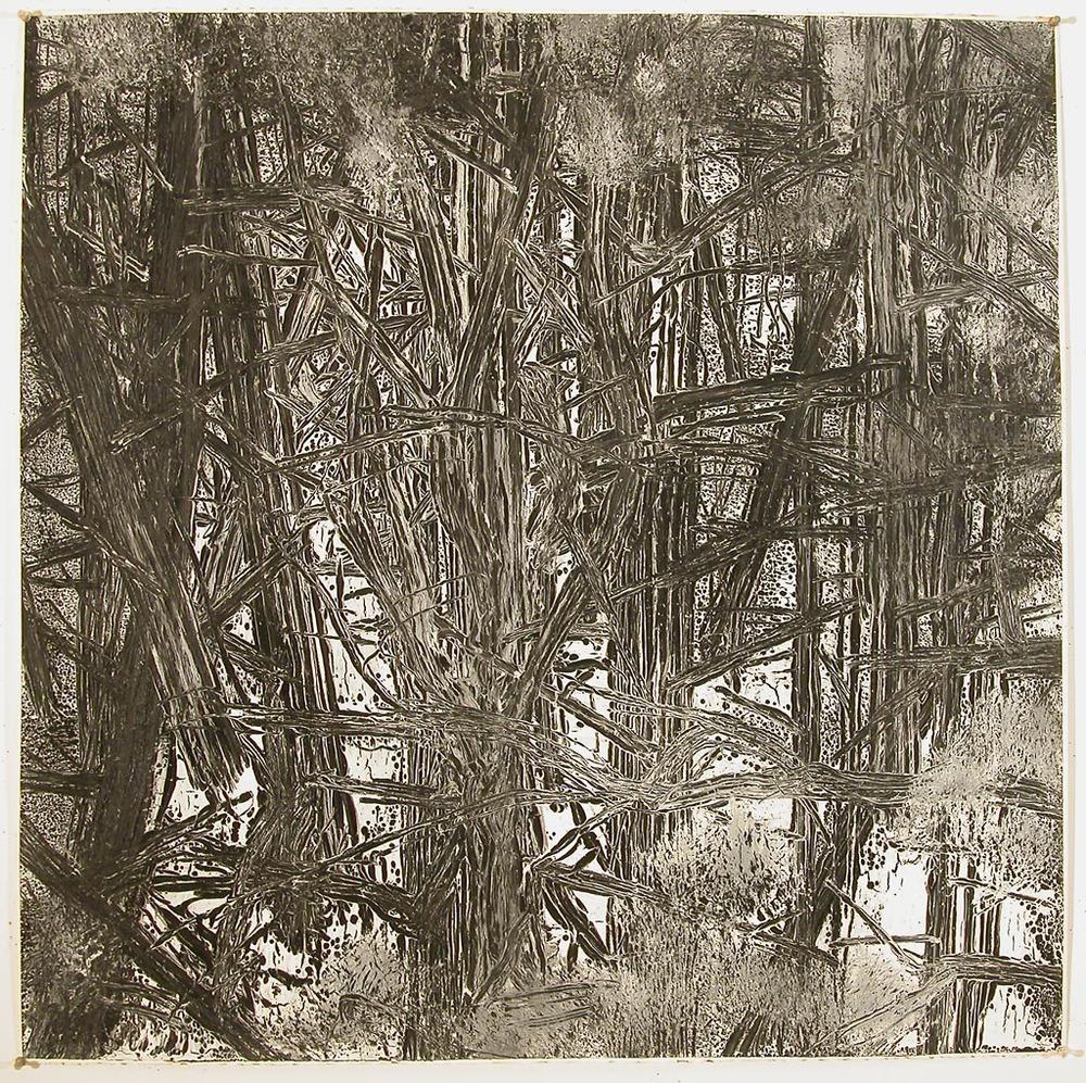 Woods #11