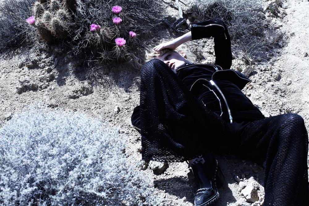 Tetsuharu-Kubota-Joshua-Tree-02_1000px.jpg