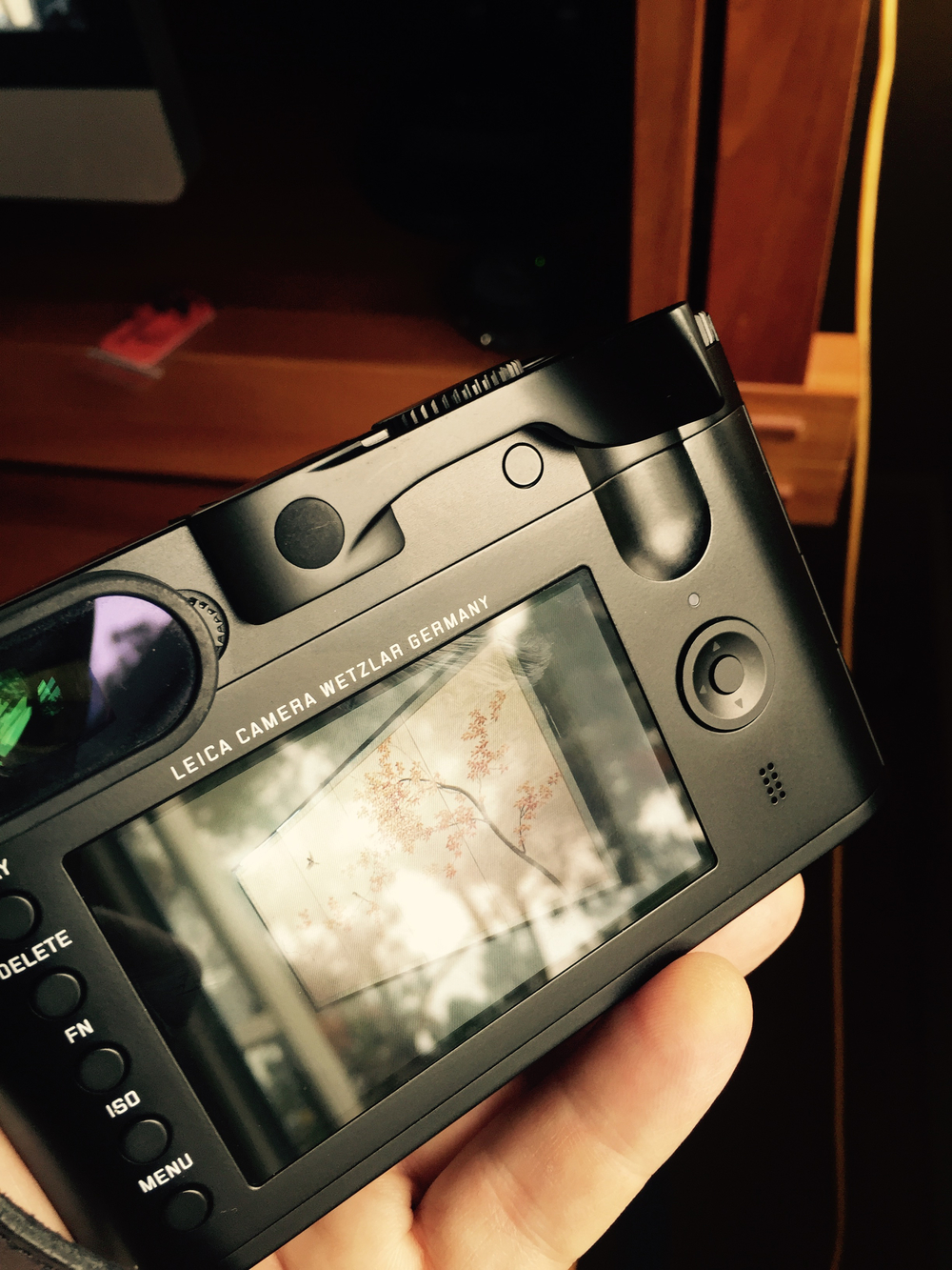 Thumbs Up for Leica Q, 2015.