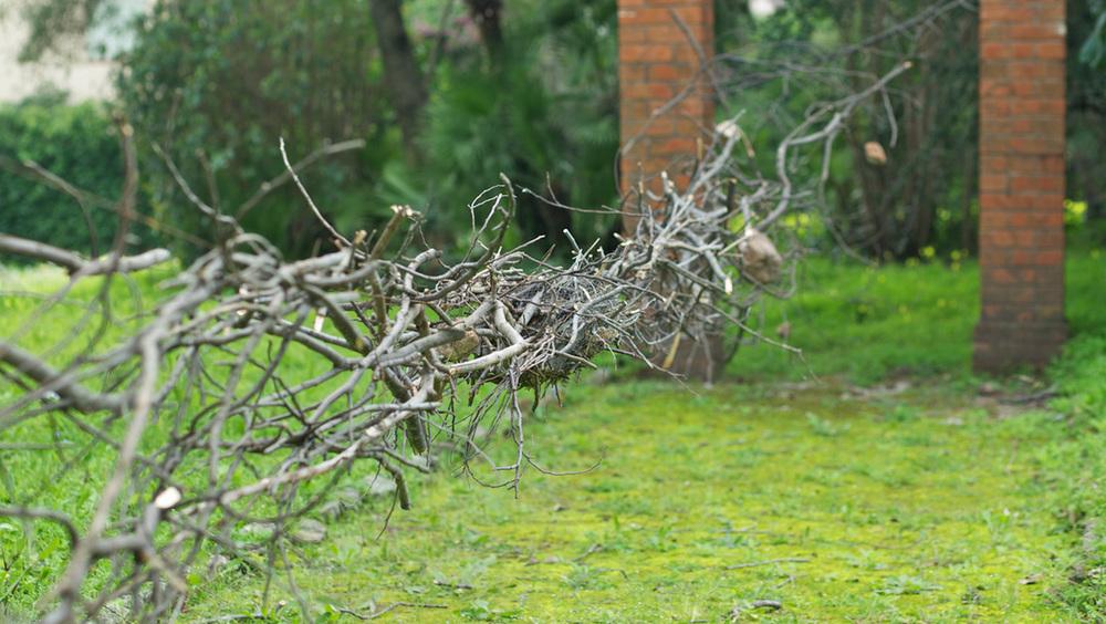 natural-span-4.jpg