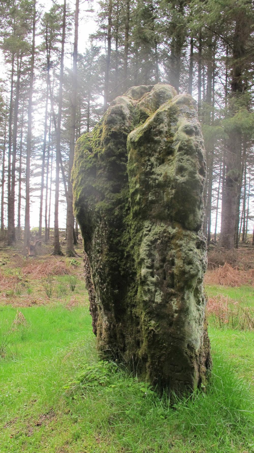 Kingarth Standing Stones - Bute