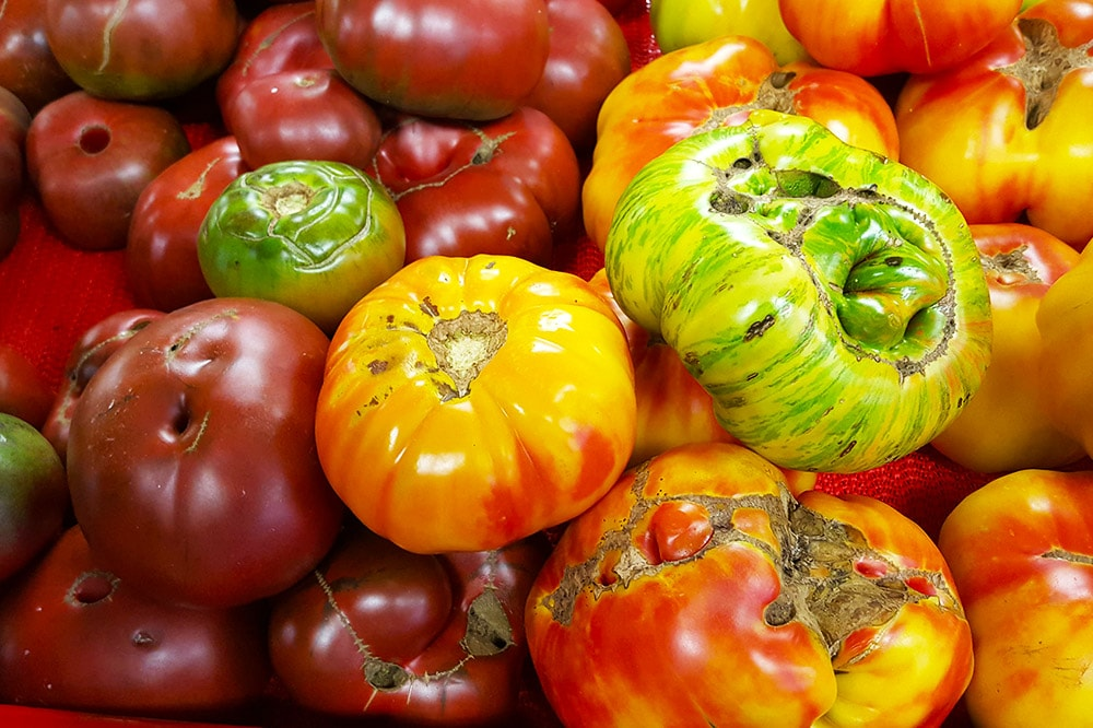 tomatoes-min.jpg