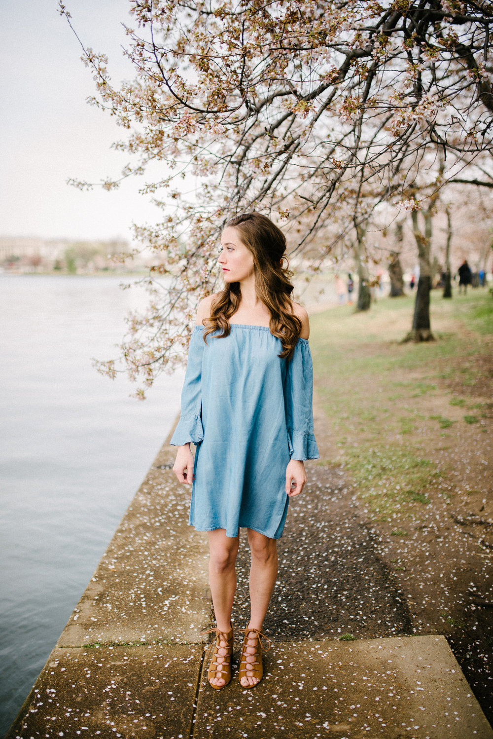 Washington D.C. Cherry Blossom Engagement