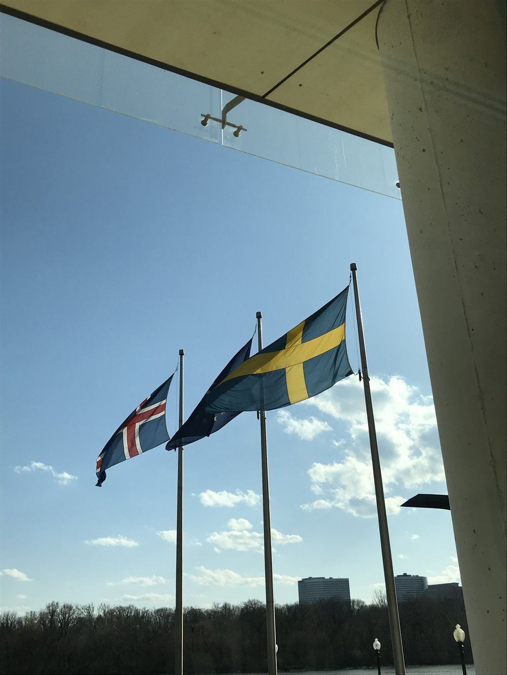 Looking out from the House of Sweden at the flags of Sweden, Iceland, and the EU.