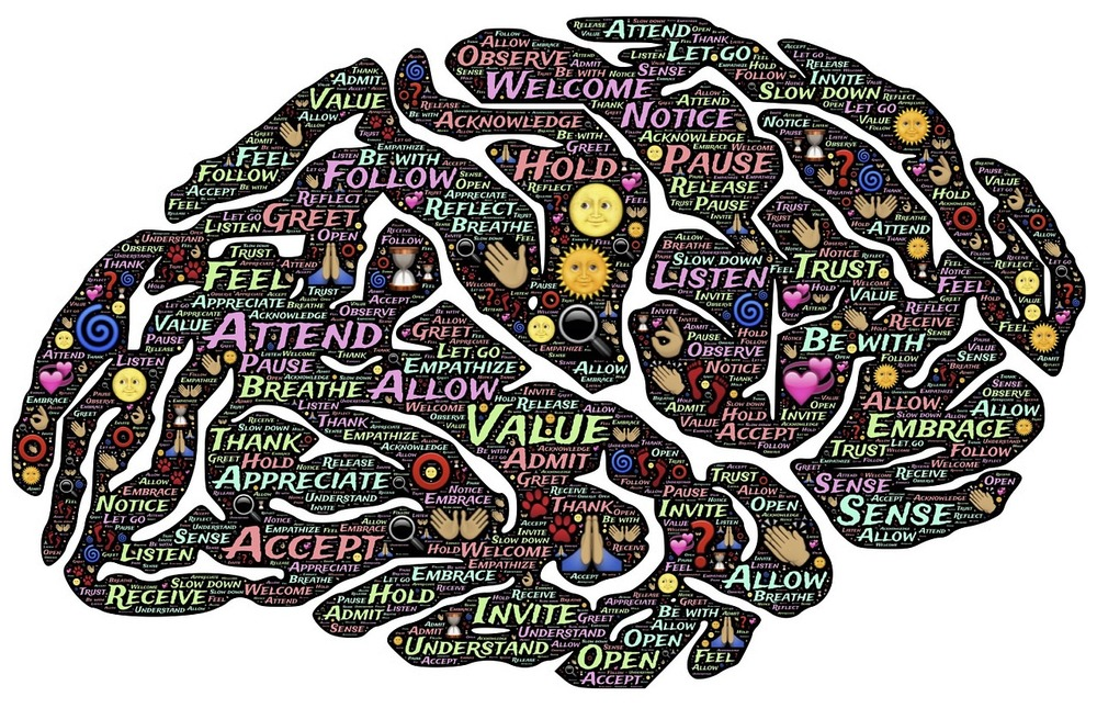 Executive Function/Decision Making:  How Your Brain Handles Information