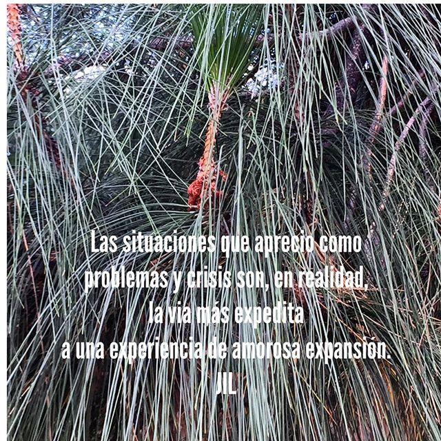 Las situaciones que aprecio como problemas y crisis son, en realidad, la via más expedita a una experiencia de amorosa expansión. #conciencia #mindfulness #abundance #paz#saludmental