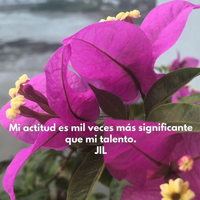 Mi actitud es mil veces más significante que mi talento.#abundance #conciencia #awareness #alegria #actitud