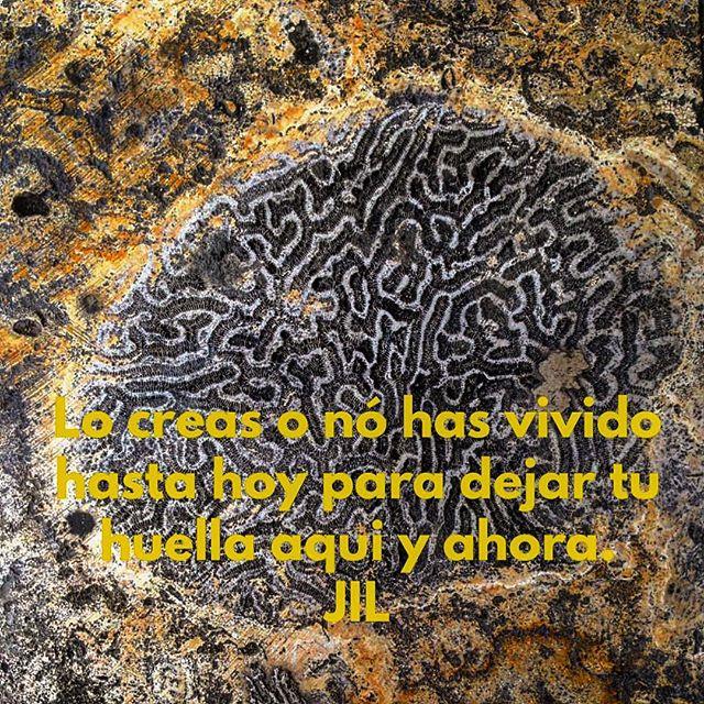 Lo creas o nó has vivido hasta hoy para dejar tu huella aqui y ahora. #abundance #conciencia #awareness #alegria #concienciaemocional #peaceful