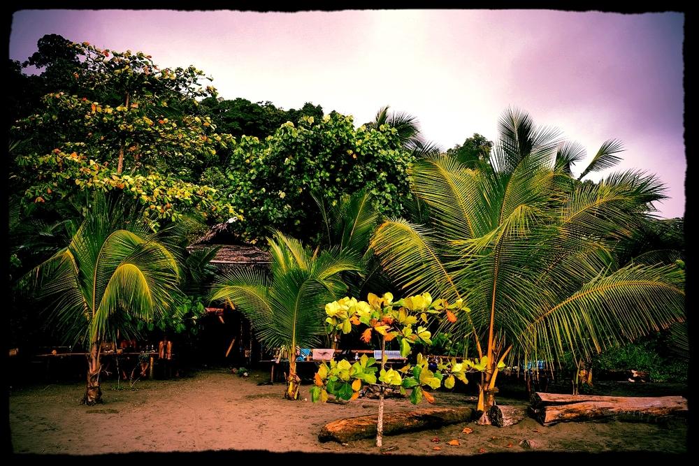 BeachViewHB.jpg