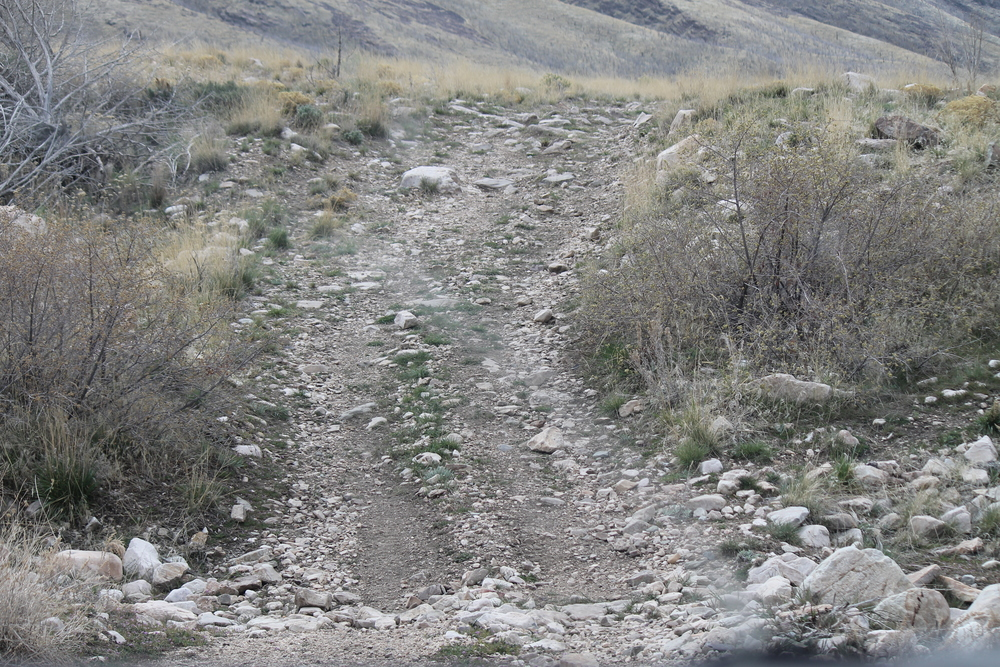 Rugged, rocky roads!