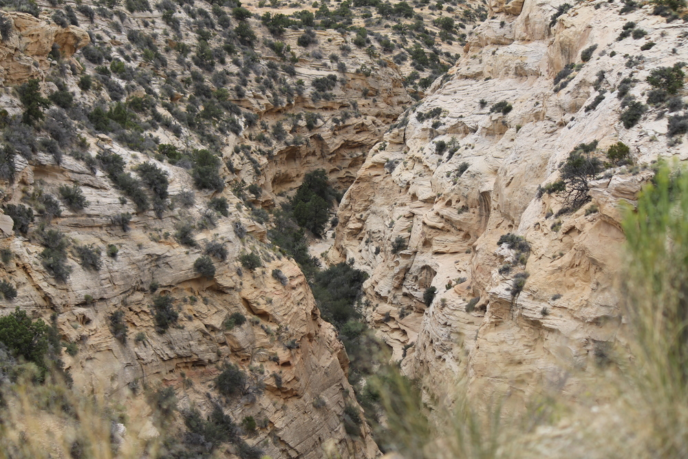 Peering into Devil's Canyon