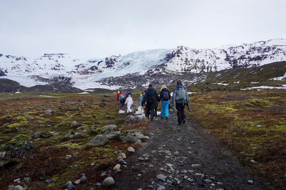 glacier trail.jpg