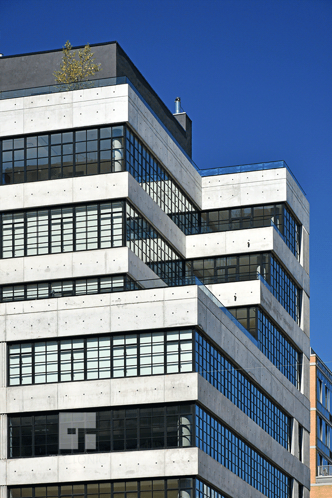 Upper Floors from 10th Avenue