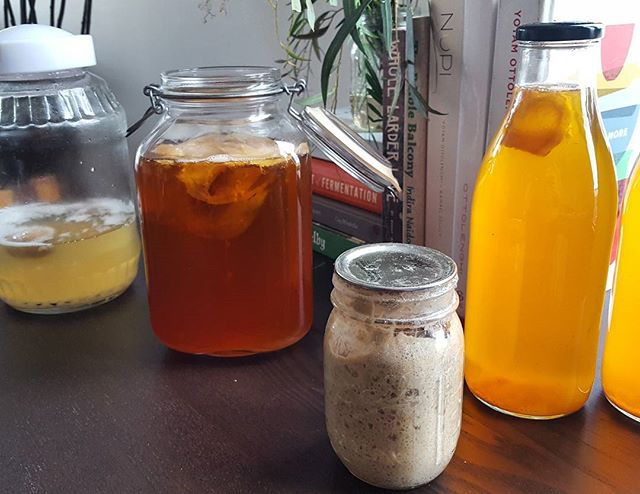 Getting my fermented babies all lined up for some workshops coming up @wanderingcooks #brisbane. So excited to be back with @leah_page teaching all things #fermentedfoods. Link in bio has all the deets