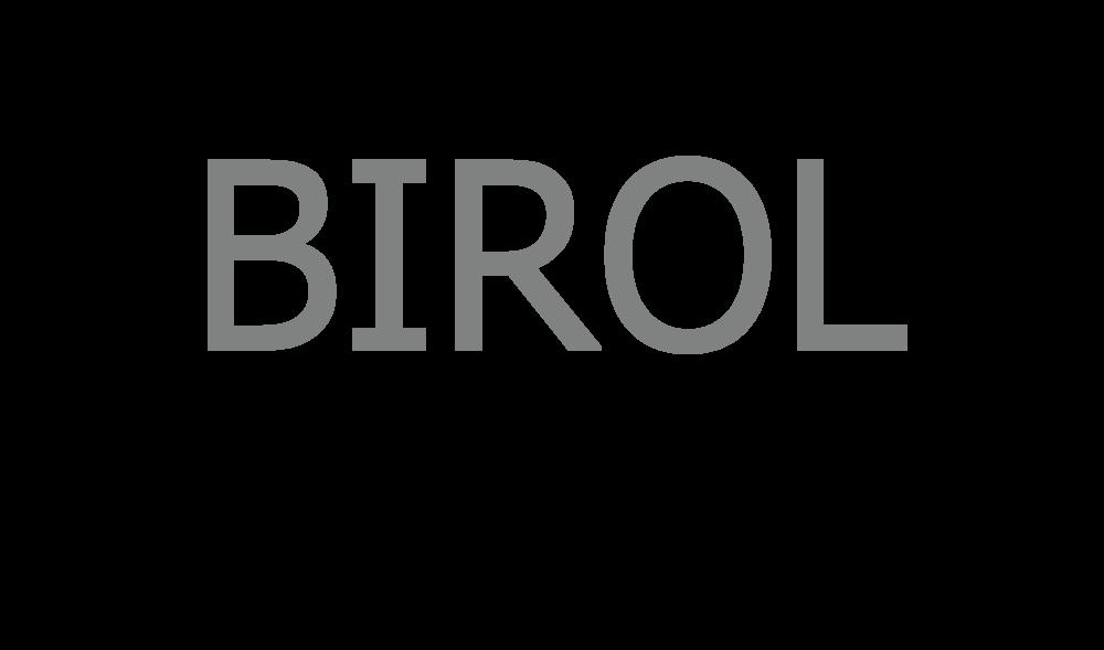 Birol-02.png