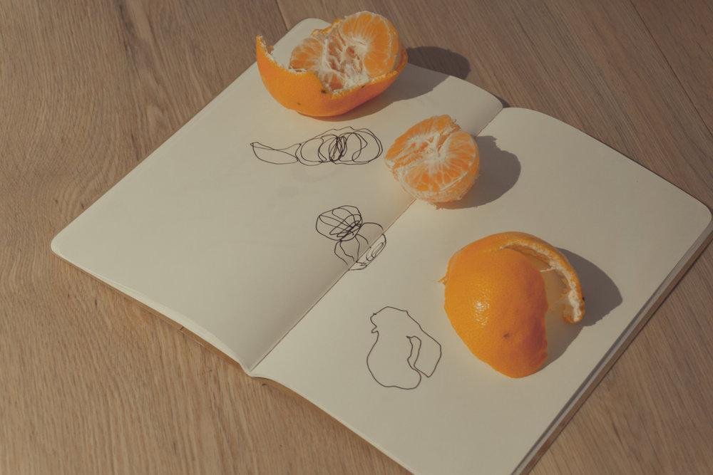 clementine studybreak2.jpg