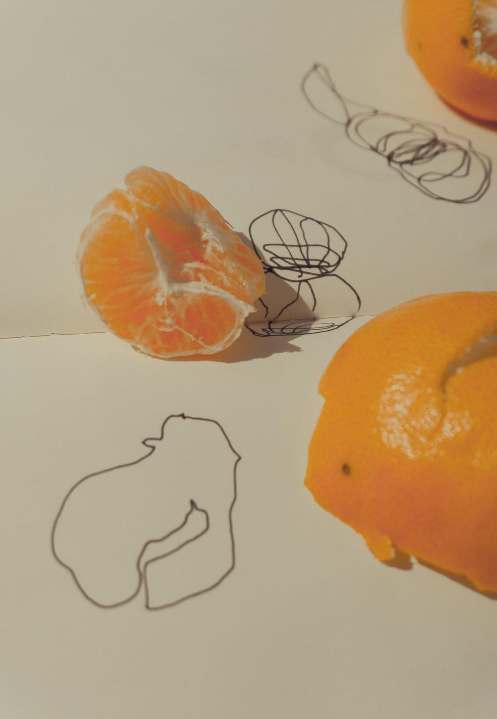 Clementine study break1.jpg