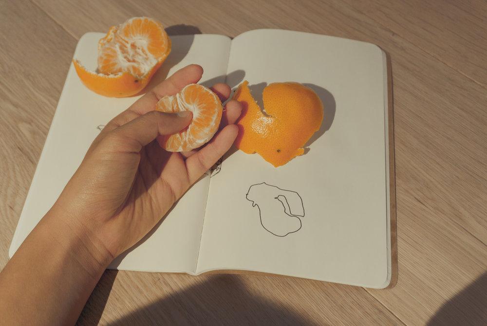 clementine study break 4.jpg