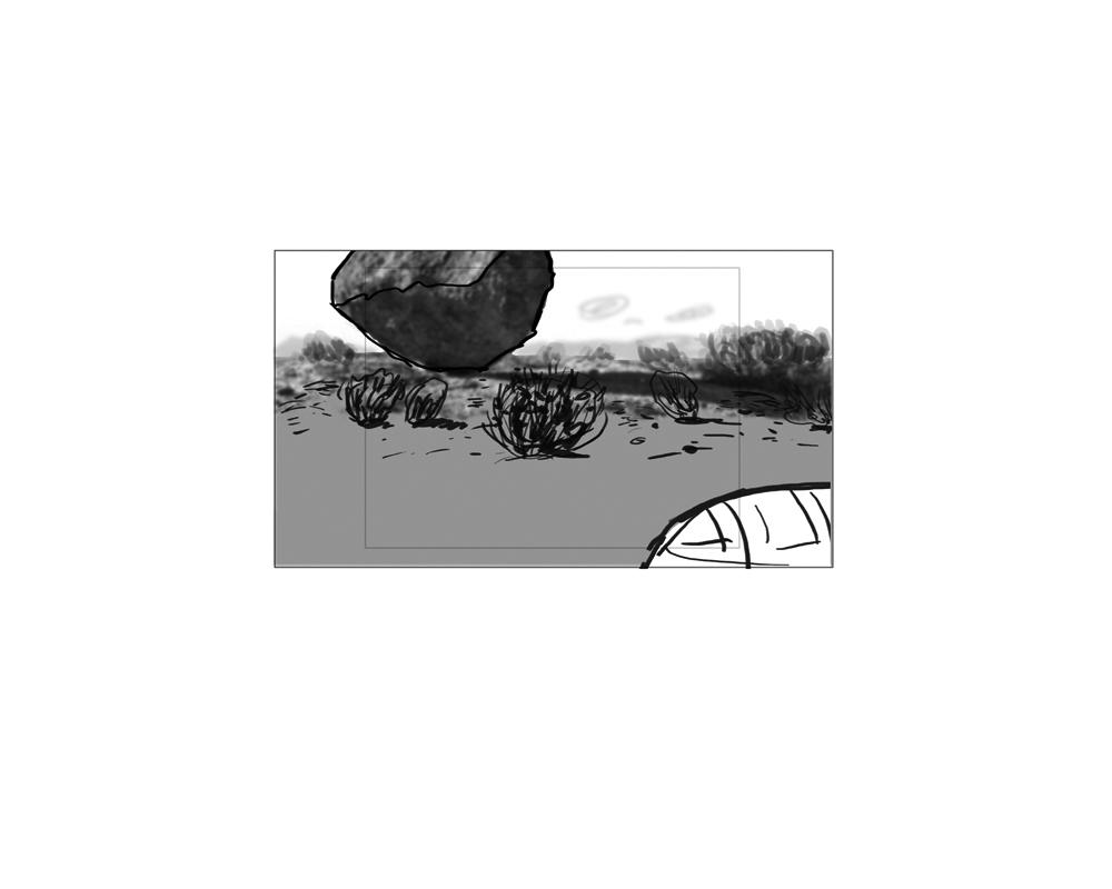 turtle_9.jpg