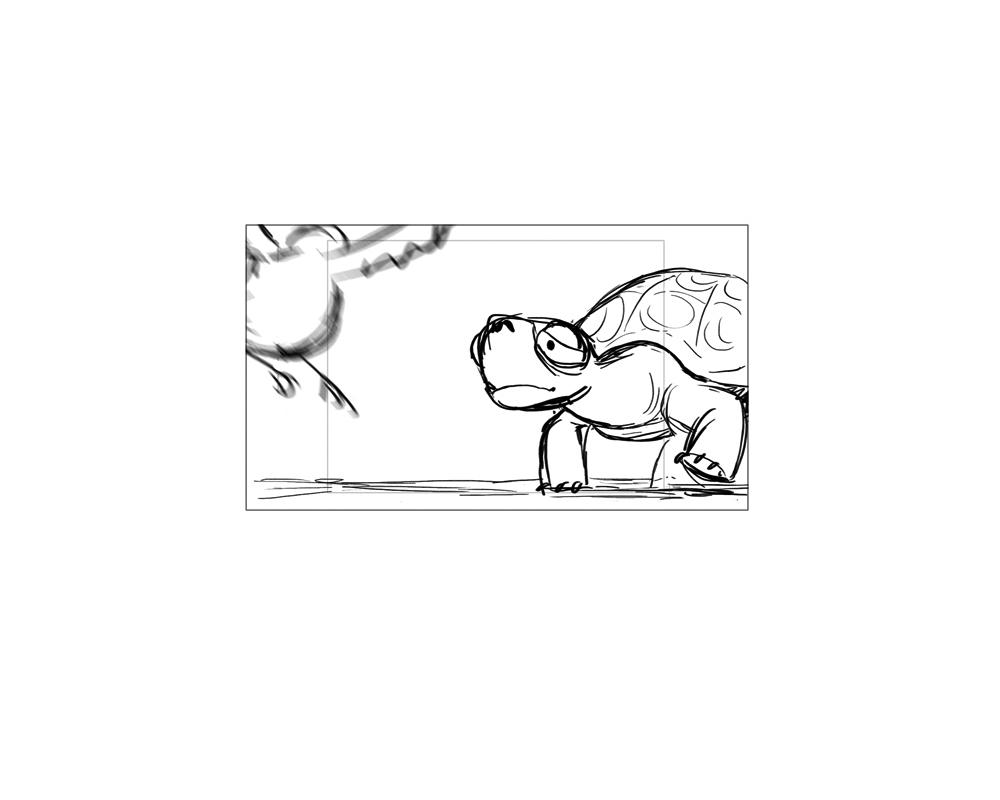 turtle_44.jpg