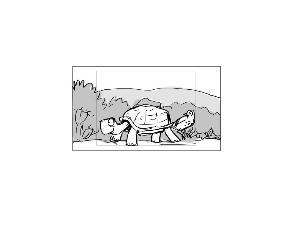 turtle_114.jpg