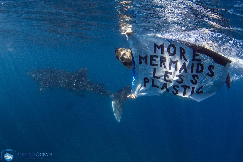 Whale Sharks - Ningaloo Reef 2019