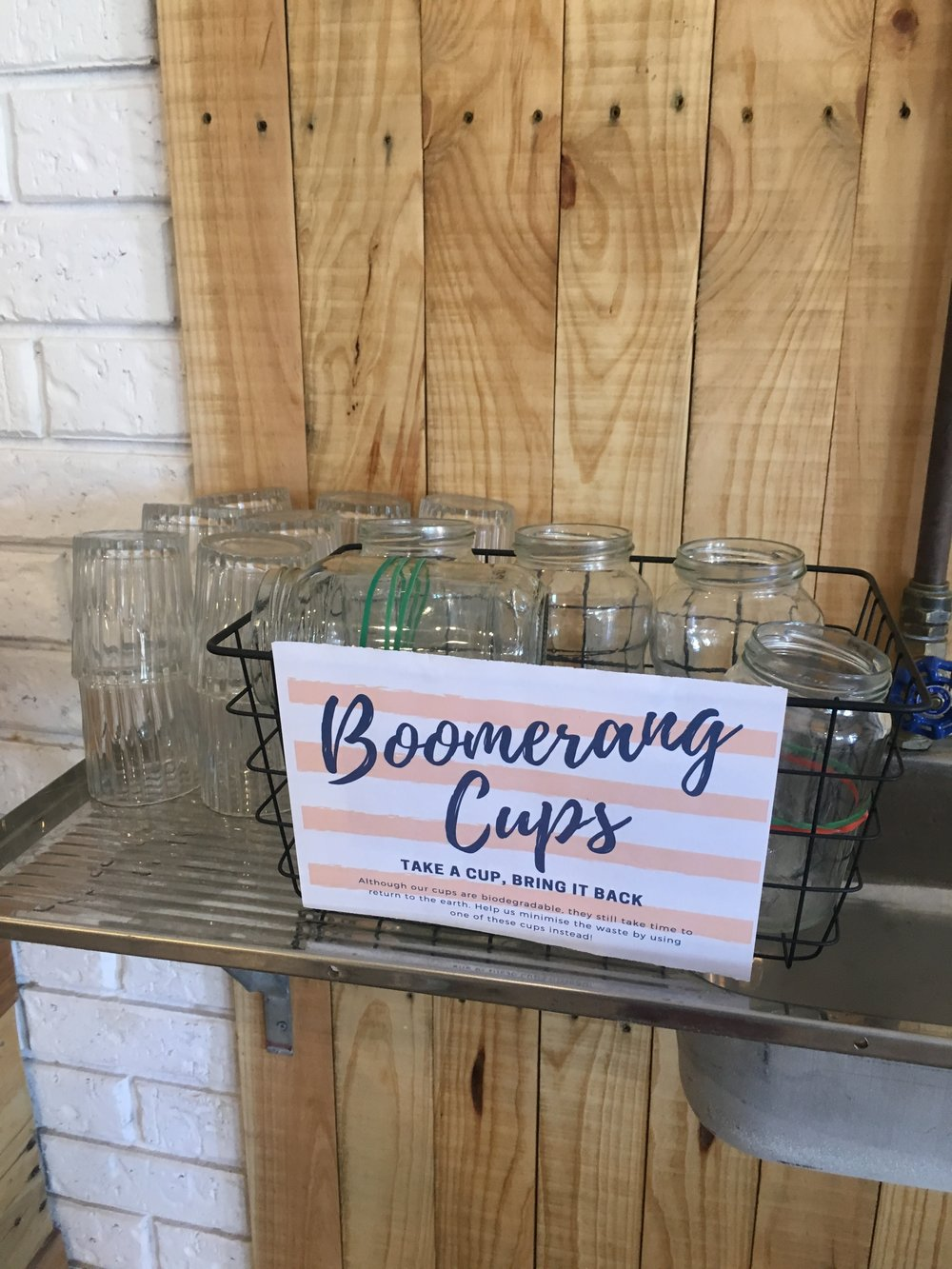 boomerng cups