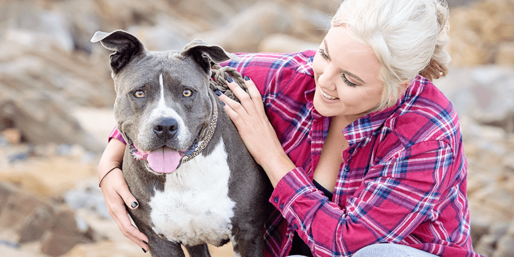 Lacey's Pet Photography Session at Lamberts Beach Mackay