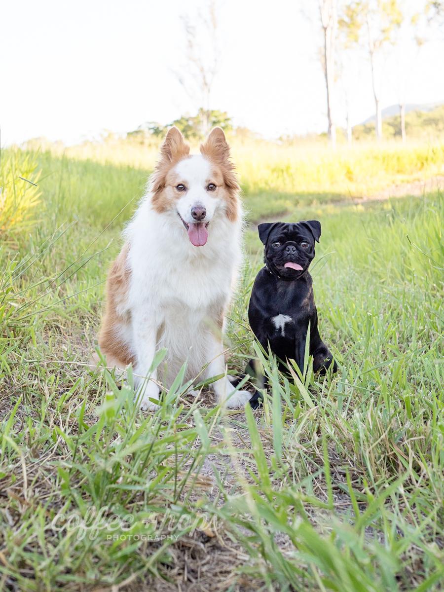 Baxter & Winston