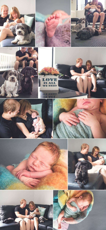 Cooper's Blog 1.jpg