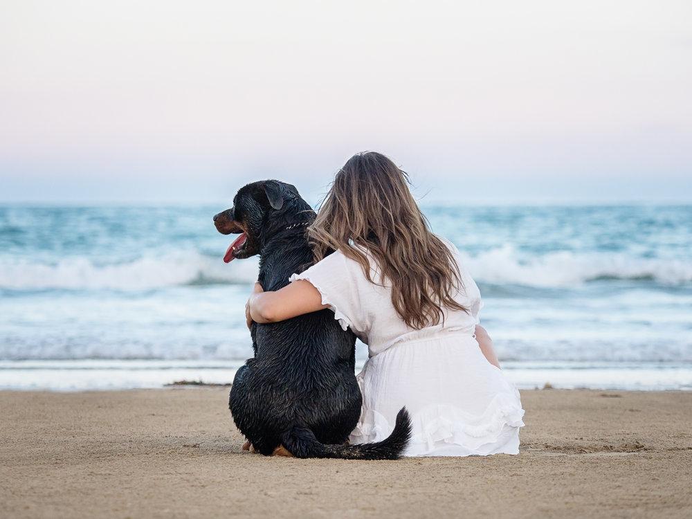 Brax-Pet-Session-at-Northwall-Beach-Mackay-3.jpg