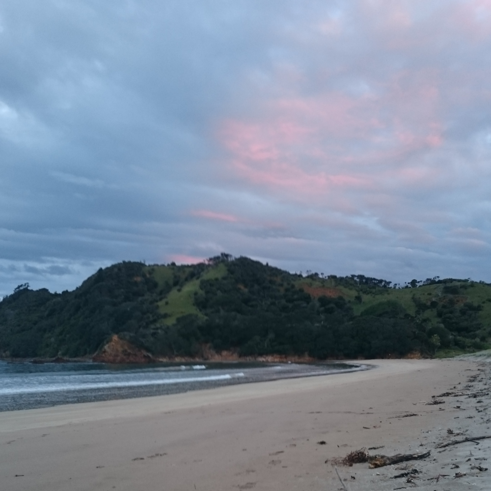 Waikawau Bay, nice spot for dinner