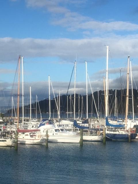 Wellington Marina