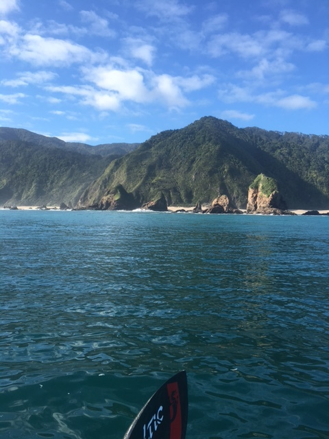Views from the water just south of Kahurangi Point.