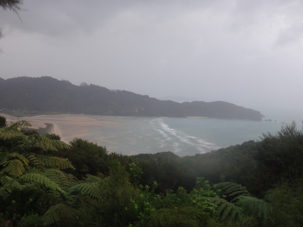Misty wet day in Wainui Bay.